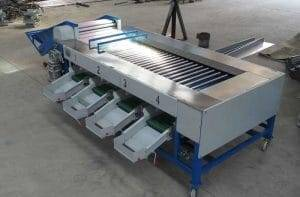 Rolling Roller Type Tomato Size Sorting Grading Machine