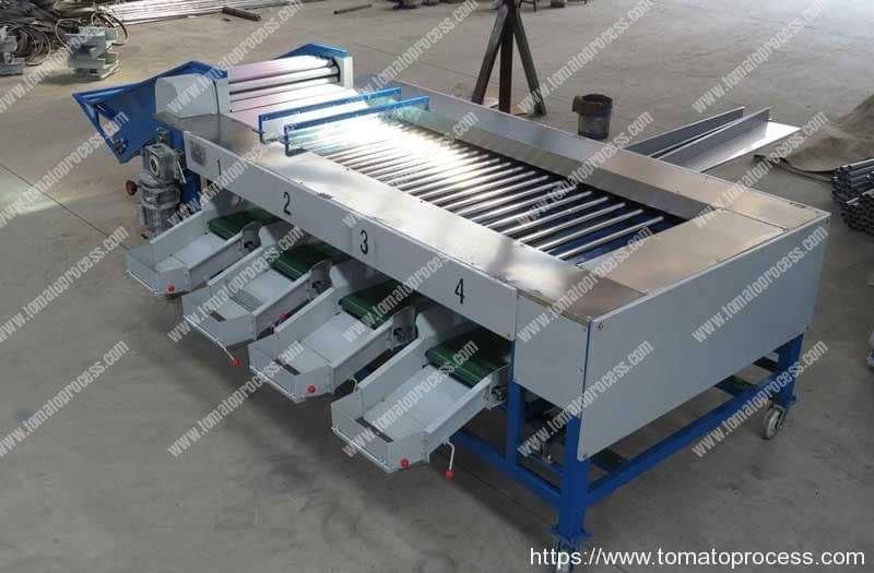 Automatic-Cherry-Tomato-Four-Size-Sorting-Machine-for-Sale