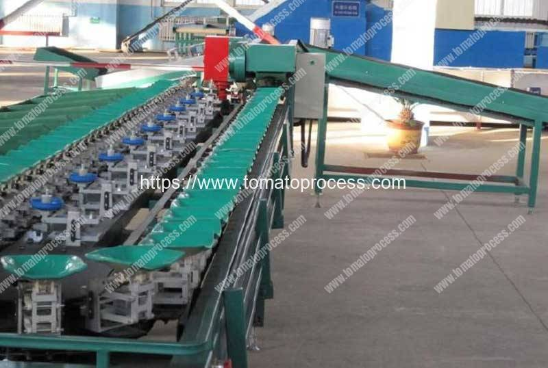 Automatic-Fresh-Tomato-Weighting-Grading-Machine