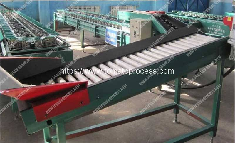 Automatic-Fresh-Tomato-Weighting-Grading-Sorting-Machine