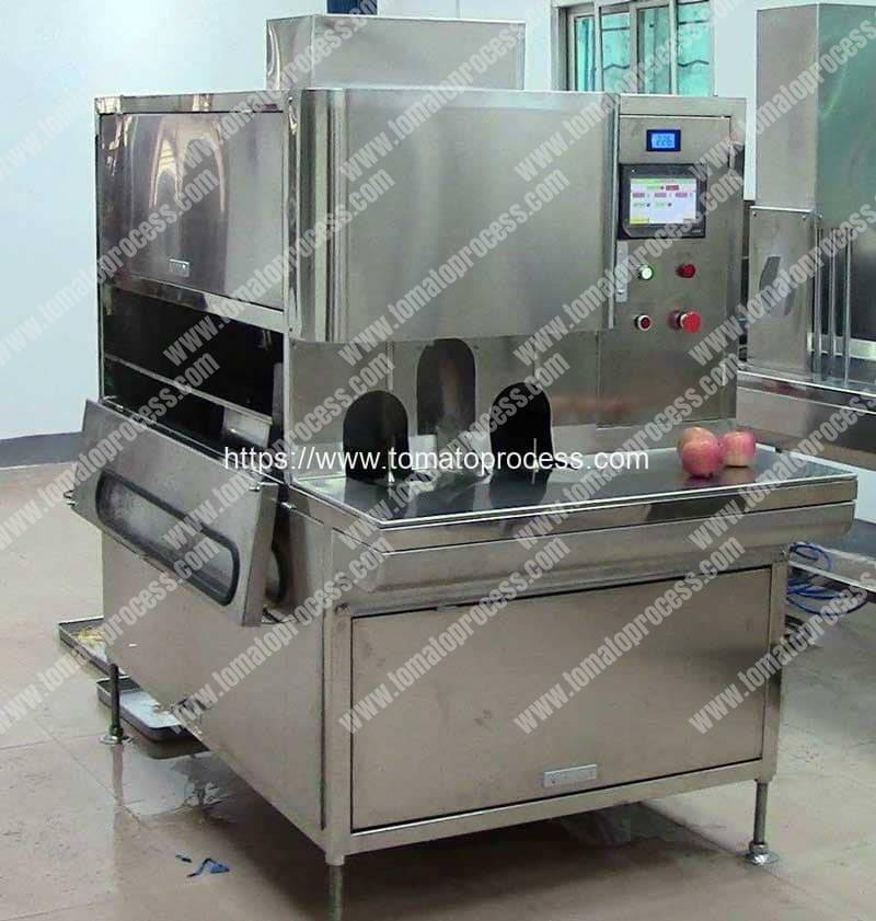 Automatic-Tomato-Peeling-Machine-for-Sale
