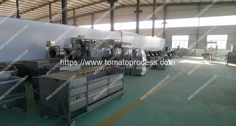 Tomato-Processing-Machine-Production-Line-Manufacture-Factory-Visit-Romiter-Machinery