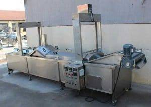 Automatic Tomato Hot Water Blanching Machine