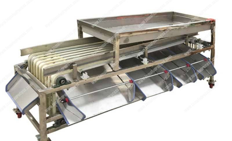 Belt-Type-Cherry-Tomato-Size-Grading-Sorting-Machine