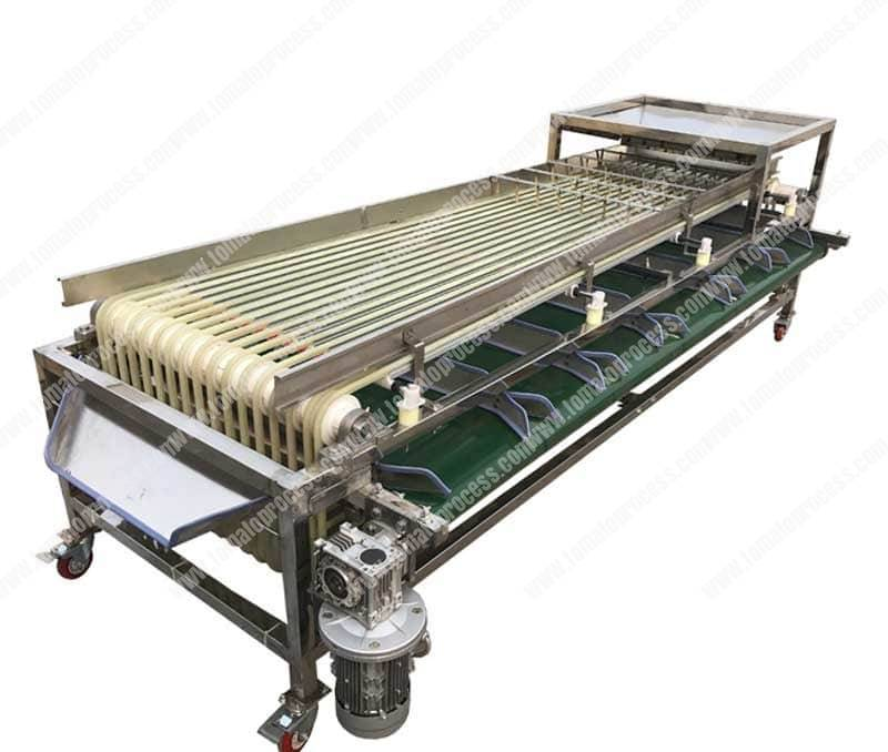Belt-Type-Cherry-Tomato-Size-Sorting-Machine