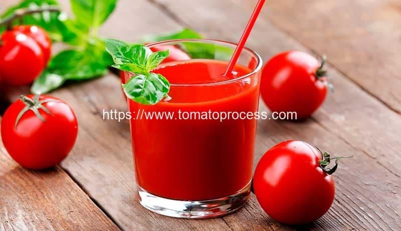 Automatic-Tomato-Juicer-Making-Machine